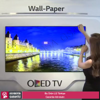 LG 55EJ5C 1,2mm Bezel Full HD OLED Wallpaper Monitör